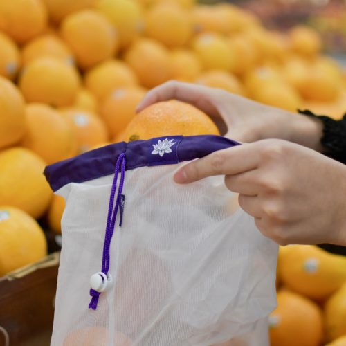 Lotus Produce Bag with Oranges